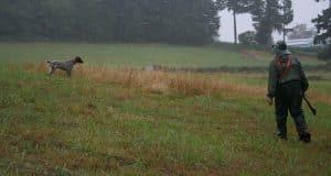 hunter and dog testing