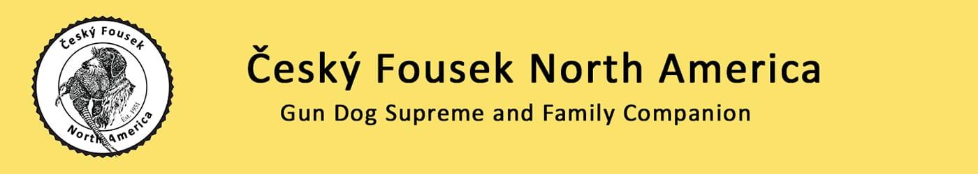 Cesky Fousek North America