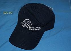 Blue CFNA Logo Cap