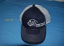 Blue with white mesh CFNA Logo Cap