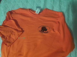 Old logo long & short sleeve shirt. Blaze orange