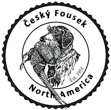 Cesky Fousek north america seal